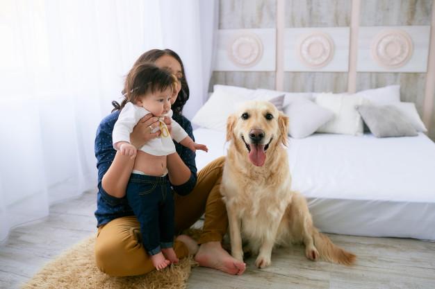 mascotas beneficios